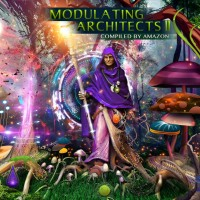 Modulating Architects 2